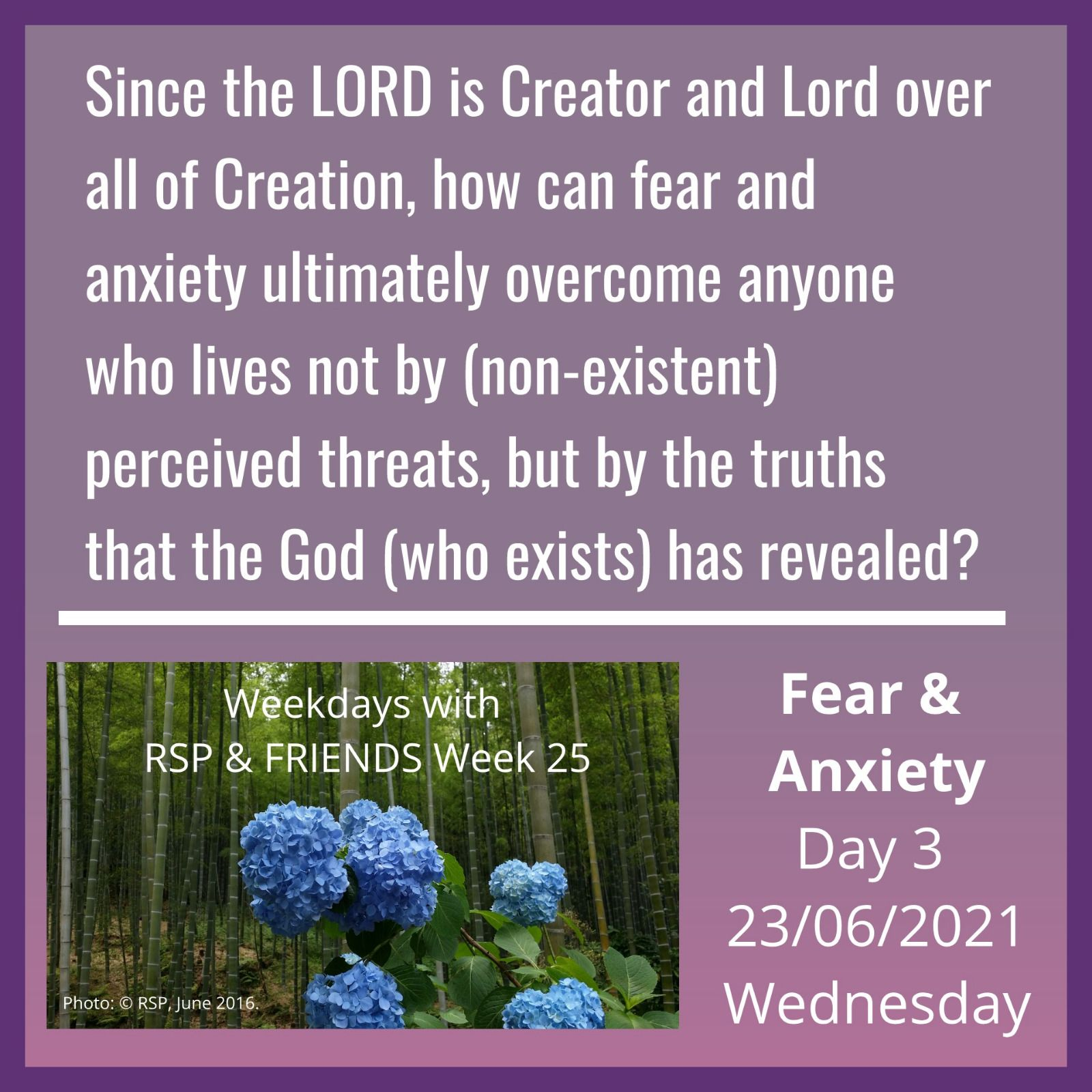 fear & anxiety - day 3